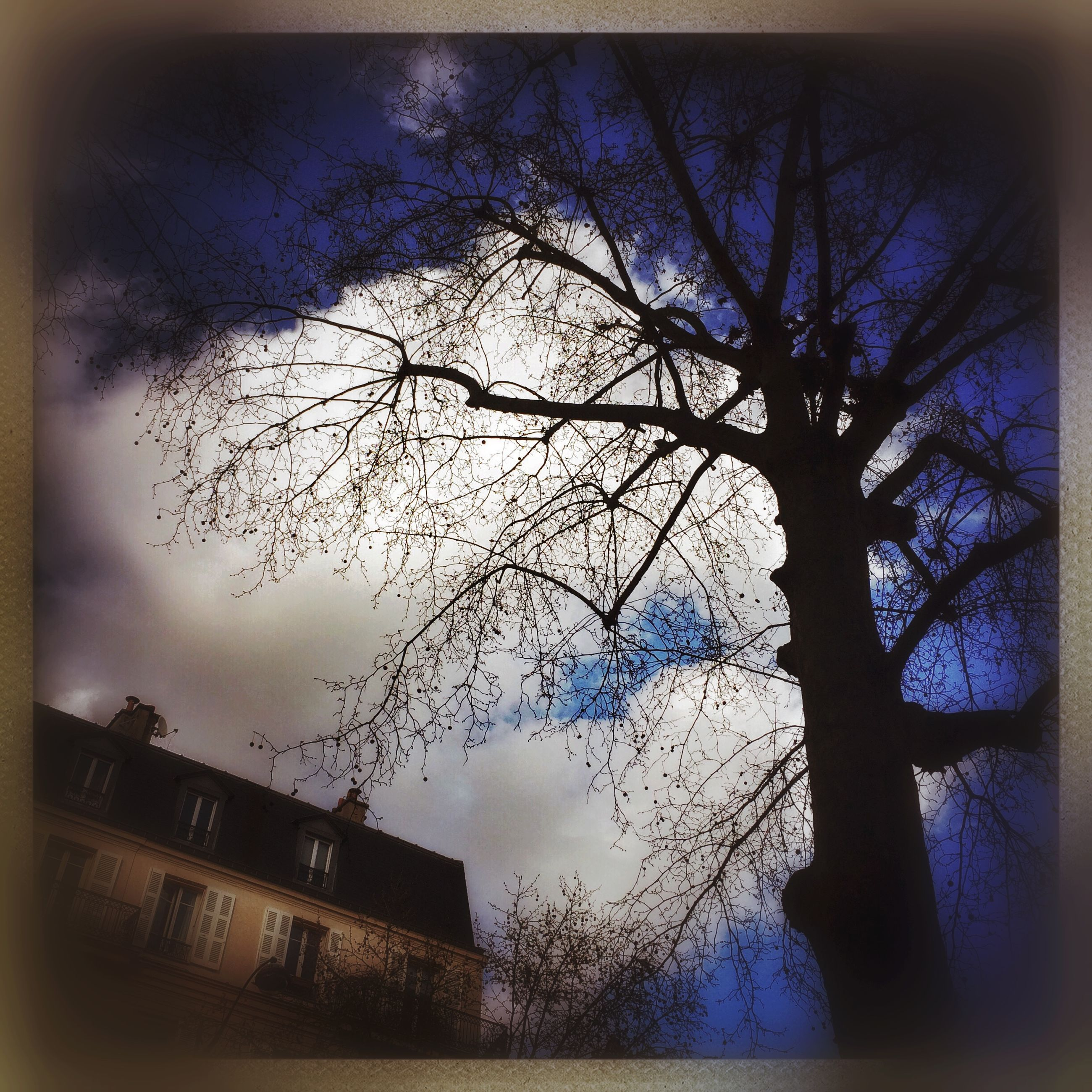 bare tree, tree, sky, building exterior, transfer print, branch, built structure, architecture, auto post production filter, low angle view, silhouette, cloud - sky, nature, cloud, dusk, tree trunk, house, outdoors, no people, day