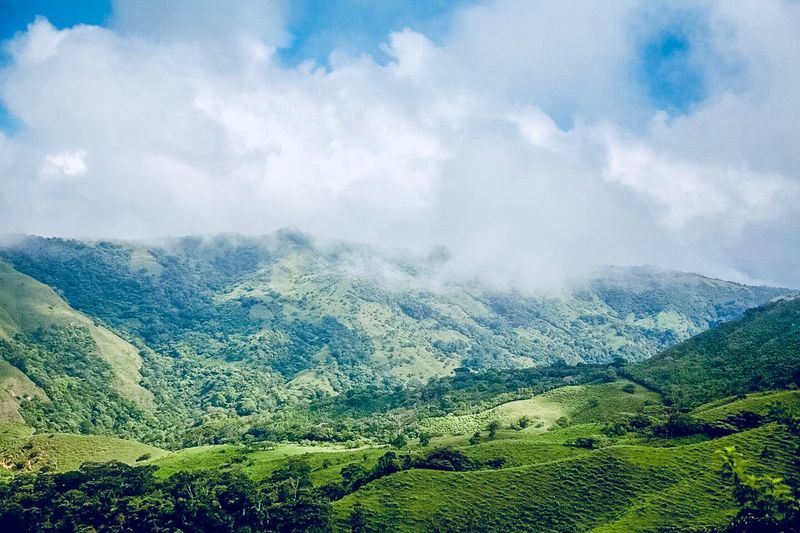 Costa Rica Landscape Near Monteverde Cloud Forest Cloud - Sky Sky Beauty In Nature Scenics - Nature Tranquil Scene Tranquility Environment Landscape Nature Green Color Tree Plant Non-urban Scene Day No People Mountain Growth Land Idyllic Outdoors