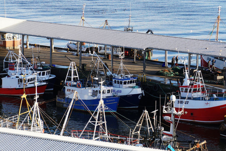 Fishing boats in North Shields, England, UK Nautical Vessel Mode Of Transportation Transportation Water Moored Sea Harbor High Angle View Day Nature Travel Sailboat Side By Side Fishing Industry Port Tyne And Wear North Shields Fishing Fishing Boat Fishing Boats England North East Outdoors Humanity Meets Technology Analogue Sound