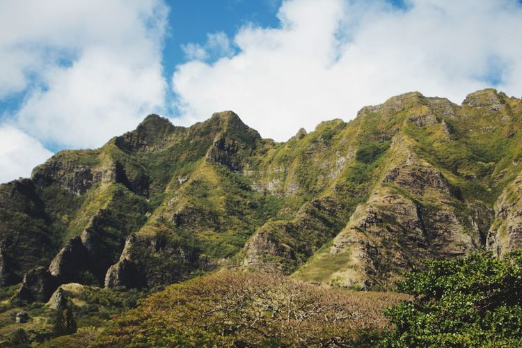 Kualoa ranch, where major movies were filmed Beauty In Nature Cloud - Sky Day Green Color Landscape Mountain Mountain Range Nature No People Outdoors Rock - Object Scenics Sky Tranquil Scene Tranquility Tree