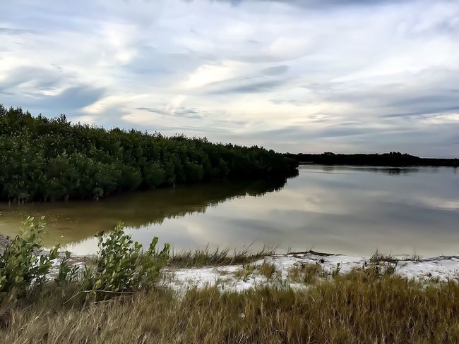 Walking Around Clouds And Sky Shades Of Grey Cloudy Skies Saltmarsh Sand Beachgrass Landscape Landscape #Nature #photography Dreamy Serene Tranquil Scene Stressfree Murky Water Natural Beauty Water Water Reflections Cloudreflection Primordial Walking Around Florida Skies