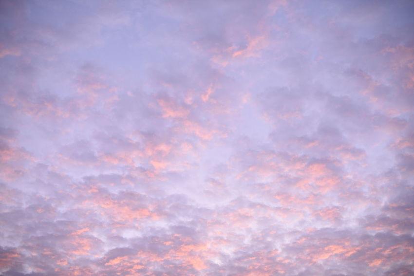 嵐を連れてきたのは、あなただったのかな? Snapshots Of Life Magichour Golden Hour Morning