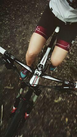 Nature Outdoorsports Trail Outdoor Landscape MTB Mountainbike Mountainbiking Cycling Cyclinglife Wood Forest Wald Path Stevens Maloja Soulinthewoods