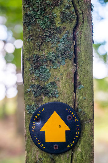 Public Open Lichen Arrow Symbol Close-up Communication Geometric Shape Guidance Information Information Sign Moss No People Outdoor Outdoors Peak District  Shape Sign Symbol Wood - Material Arrow Sign Directional Sign