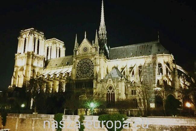 Katedra Notre Dame. Paryż Cathedral Notre-Dame Notredame Paryż Paris Traveling Francja France Landmarks Landscape