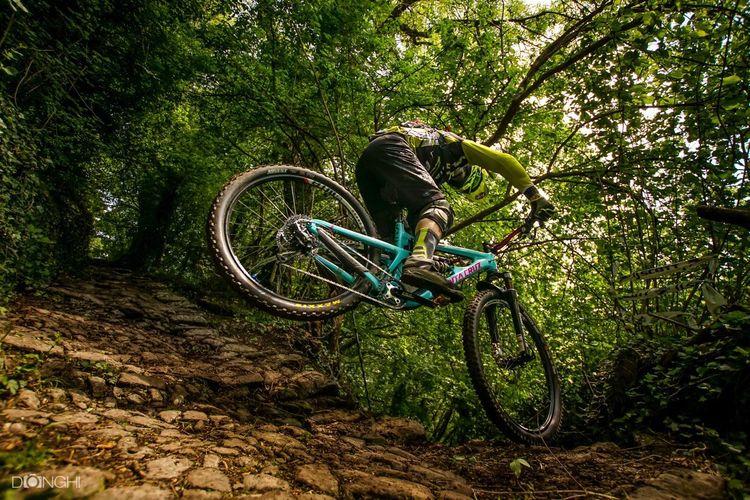 MTB Biking Bicycle Mountain Bike Tree Green Color Forest Bike Endurocuplombardia Sports Photography Italy🇮🇹
