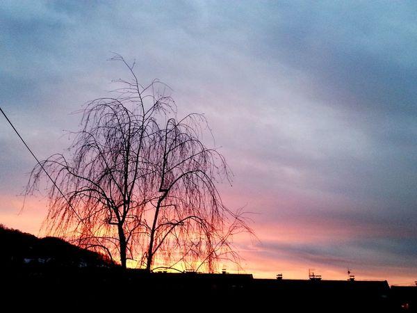 Landscape Sunstet Sunlight EyeEm Nature Lover
