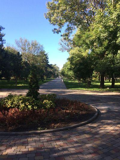 Осенний парк First Eyeem Photo