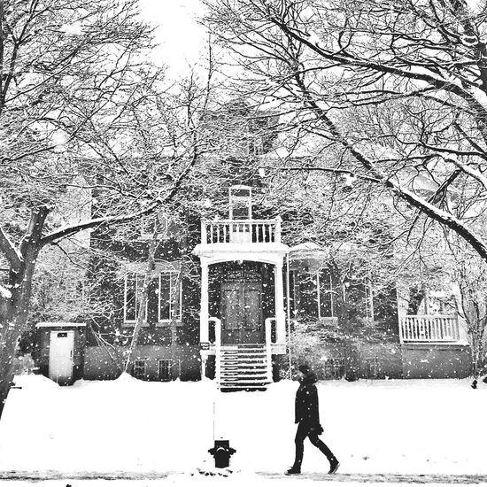 I love winter :) EyeEm Best Shots - Black + White Streetphotography Blackandwhite Montréal The Week Of Eyeem Snow ❄ Bw_collection Streetphoto_bw AMPt Community Winter