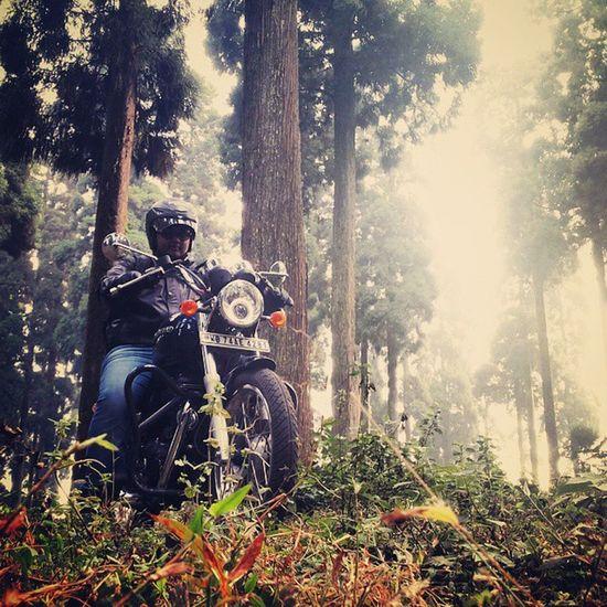 Ride through the Pine's Instalike Instafav Bikersofinstagram Royalenfield Thunderbird 350