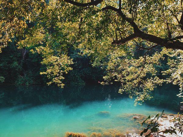 Nature #landscape #photography #forest #moutain #clound #sky #blue #peace River #landscape #photography #nature