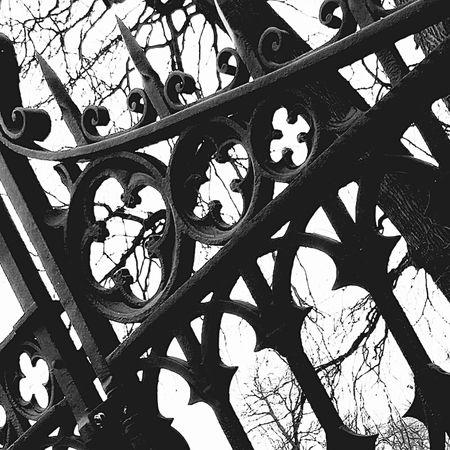 Ironwork  Old Gate Castlegate Twickel Holland Delden Overijssel Castleporn Old Gates I Love Gates Architecture_collection Iron Nature Lover