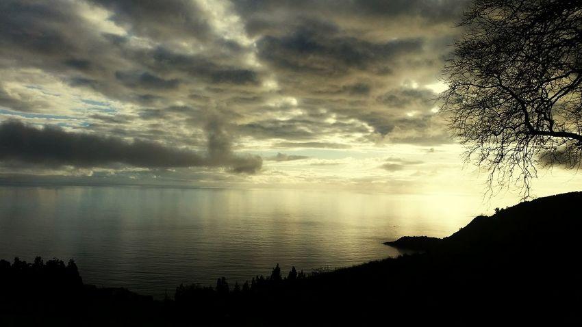 Reflection Cloud - Sky Nature No People Beauty In Nature Tree Sky Outdoors Landscape Povoação Azores, S. Miguel