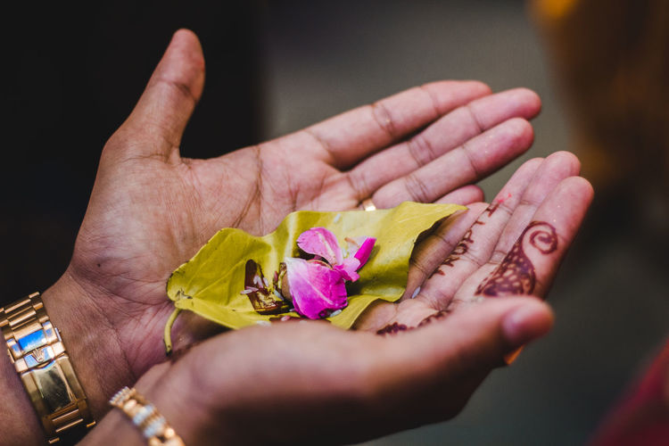 Human Hand Hand Flower Flowering Plant Human Body Part Real People Holding One Person Close-up Plant Beauty In Nature Freshness Fragility Vulnerability  Nature Pink Color Selective Focus Petal Lifestyles Flower Head Finger Springtime Decadence The Portraitist - 2019 EyeEm Awards The Creative - 2019 EyeEm Awards The Street Photographer - 2019 EyeEm Awards