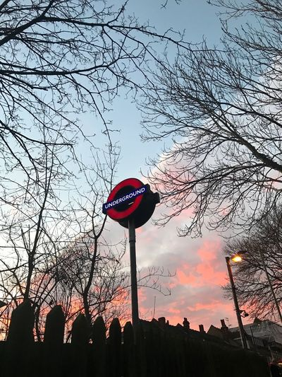 Bare Tree Sky Communication Low Angle View Built Structure Outdoors No People Tree Architecture Branch Day London Underground Unseen London Metro London Roundel