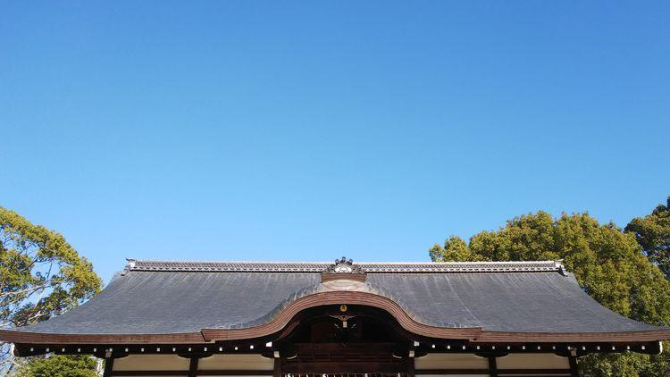 The roof of the shrine Japan Blue Sky Sky Collection Shrine Japanese Garden The Blue Sky Tree Clear Sky Blue Sky Thatched Roof Roof Tiled Roof  Rooftop