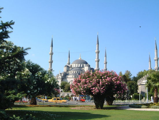 Blue Mosque Architecture Blue Mosque Blue Sky Building Exterior Built Structure Church Composition Dome Famous Place Flowering Bushes Grass Istanbul Lawn Minarets Mosque No People Outdoor Photography Park - Man Made Space Place Of Worship Religion Spirituality Sunlight And Shadows Tourist Attraction  Travel Destinations Turkey