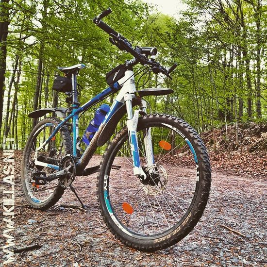 Mountainbike Stadtwald  Iserlohn Waldweg Wald