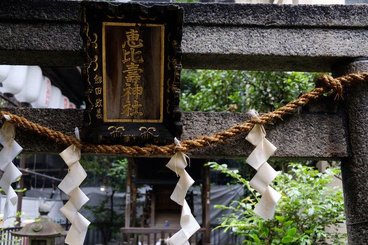 鬼王稲荷神社 Fujifilm FUJIFILM X-T2 Fujifilm_xseries Japan Japan Photography Kabukicho Shinjuku Shrine Tokyo X-t2 新宿 日本 東京 歌舞伎町 神社 鬼王稲荷神社