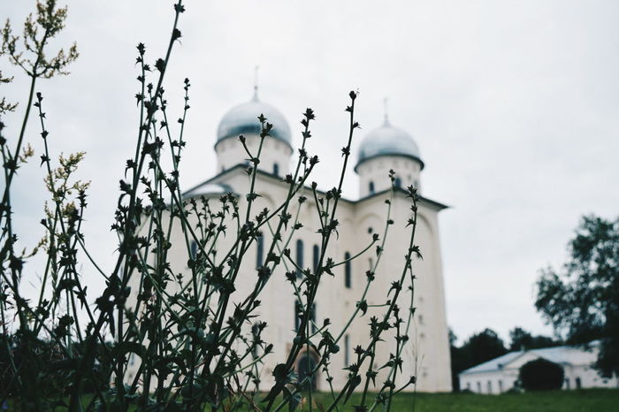 Russia Cloud - Sky No People Sky Nature Plant Outdoors Bird Bare Tree Tree Day Russian Novgorod NovgorodtheGreat Church Church Tower Churches Church Architecture Architecture Cultures Place Of Worship Sculpture Religion Church Buildings Building Exterior