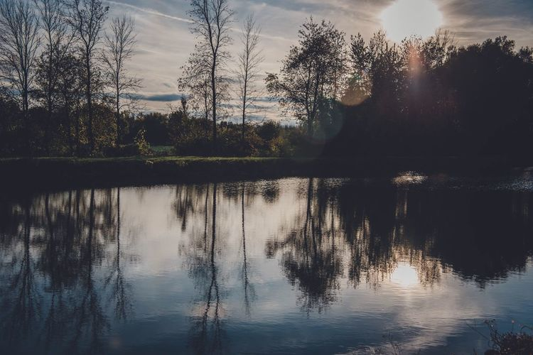 Fall reflections Atmospheric Mood Peaceful Blue Canal Water Reflection Tree Plant Sky Lake Beauty In Nature Nature Tranquility Scenics - Nature No People Silhouette Sunset Tranquil Scene Outdoors Waterfront Non-urban Scene