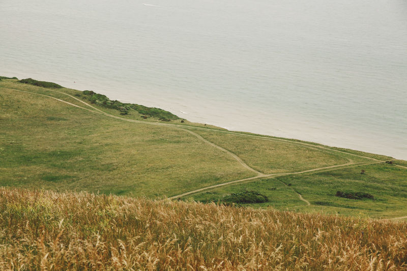 Beachy Head Beauty In Nature Coast Coastline The Great Outdoors - 2016 EyeEm Awards The Great Outdoors With Adobe Field Grassy Green Color Growth High Angle View Idyllic Lake Landscape Nature Non-urban Scene Paths Plant Remote Scenics Seaside Sky Tranquil Scene Tranquility Water