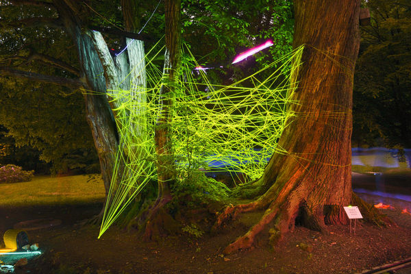 Art ArtWork Forest Grass Green Color Growth Instalation Instalations Light Instalations Lights Nature Neon Neon Lights Neon Sign No People Outdoors The Great Outdoors - 2016 EyeEm Awards The Photojournalist - 2016 EyeEm Awards Tranquility Tree Tree Trunk Tungsten  The Innovator The Mix Up Web