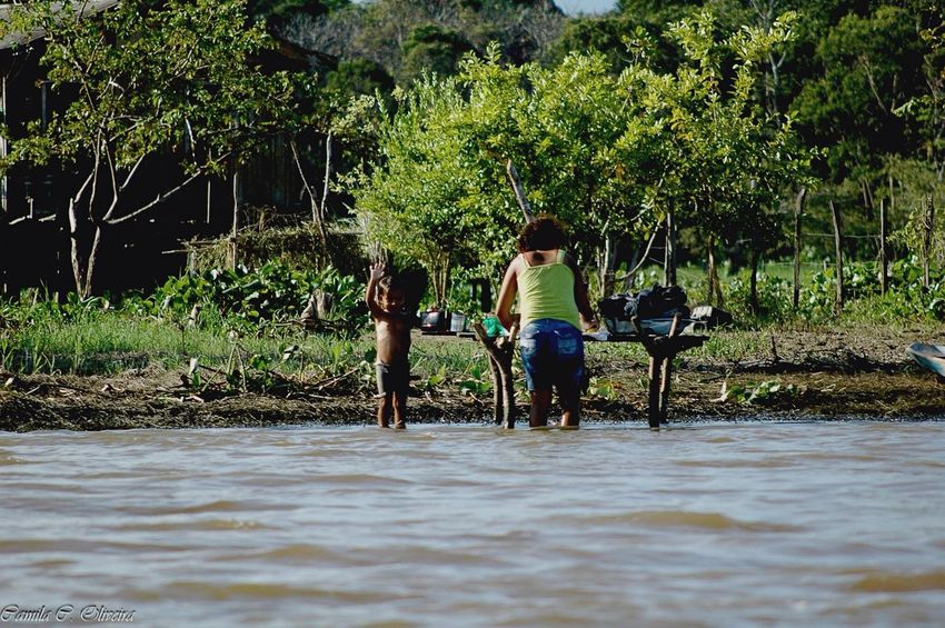 Amazonas Amazon River Amazônia Brasil Amazonia Rio Amazonas Ribeirinhos