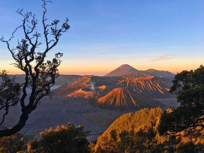 Beautiful nature at Mount Bromo Beautiful Landscape INDONESIA ASIA Beauty In Nature Landscape Photography Travel Beautiful Landscape Mount Bromo Bromo Indonesia Tourism EyeEm Selects Tree Plant Mountain Sky Cold Temperature Non-urban Scene Landscape Tranquil Scene Tranquility Mountain Range Sunset Nature Idyllic