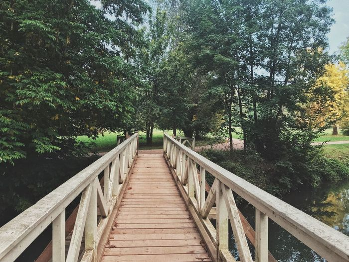 Wooden bridge in Weimar Gifhorn Weimar Wooden Bridge Beauty In Nature Bridge Day Footbridge Forest Germany Growth Nature No People Outdoors Railing The Way Forward Tranquil Scene Tranquility Tree Wood - Material