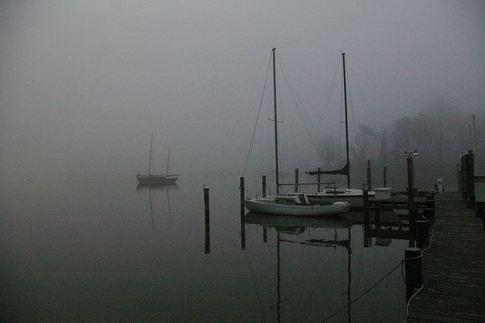 Annapolis Maryland Lake Ogelton Nature Quiet Fog Foggy Morning Ketch Scenics Scerenity