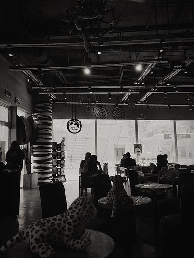 Cafe Urban City Life