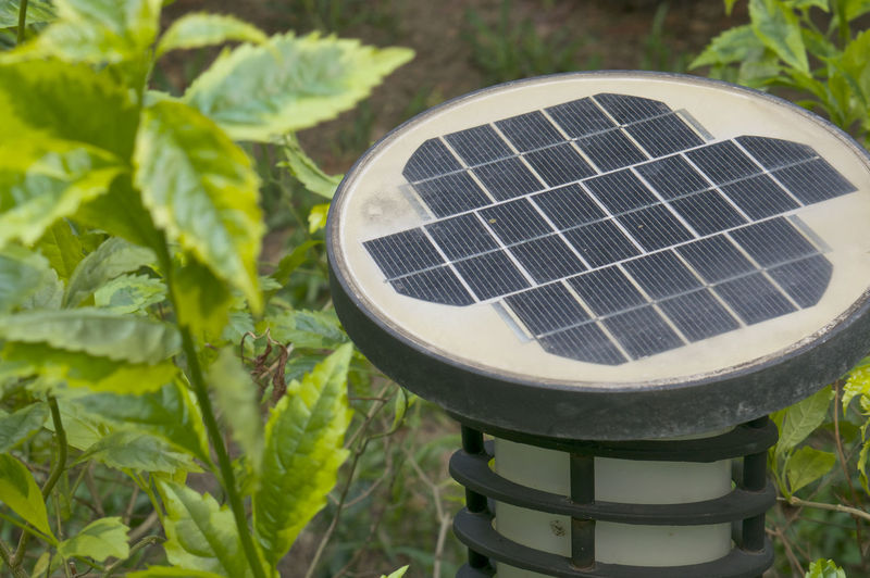 Old black and white solar powered with lanterns in garden. Grass Green Lanterns Plants Solar Summertime Bulb Cells Close-up Day Decorative Energy Garden Illuminates Lamp Lawn Leaf Lit Nature No People Outdoors Plant Powered Technology Walkway