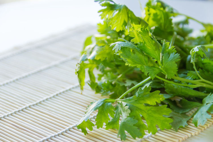 Close-up Focus On Foreground Food Food And Drink Freshness Green Color Healthy Eating Herb Indoors  Leaf Leaves Nature No People Plant Plant Part Raw Food Still Life Table Vegetable Wellbeing Wood - Material