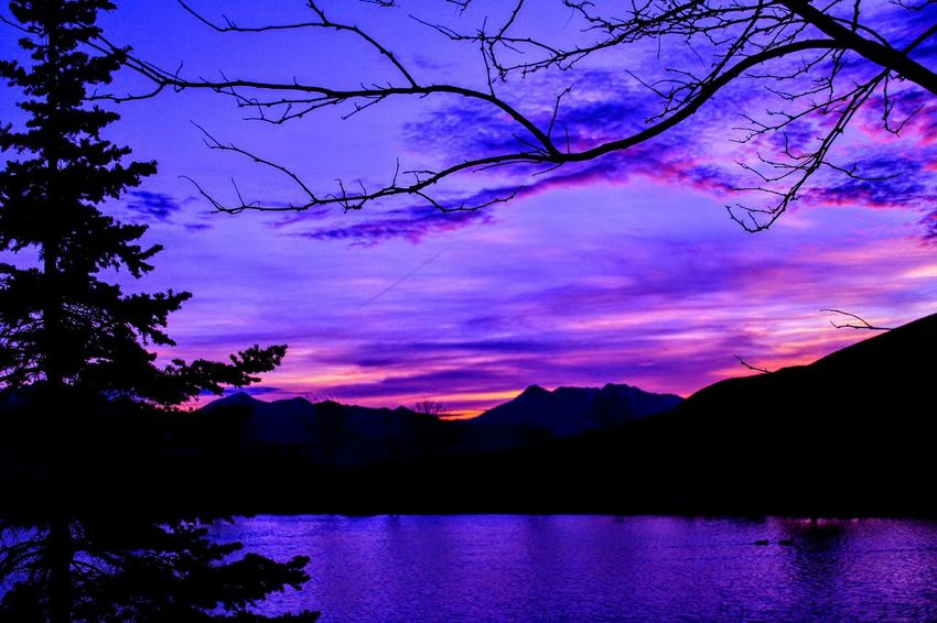 Happy Thanksgiving to everyone! Have a tremendously awesome day!! ☺☺🍺🍺 Reflection Mountain Lake Sunset Scenics Nature Purple Tree Beauty In Nature Water No People Landscape Pink Color Silhouette Sky Outdoors Tranquility Night Multi Colored Milky Way
