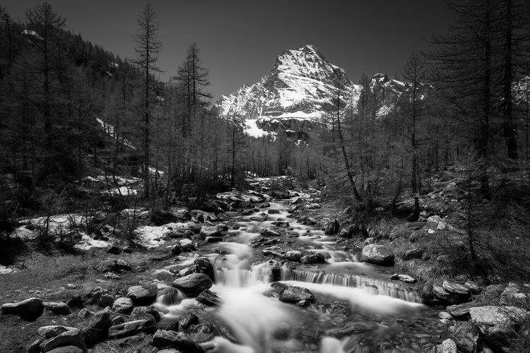 A mountain river finds its way through the forest on a rocky riverbed in the Italian Alps. Alpe Veglia Alps Alps Italy Beauty In Nature Forest Italy Landscape Landscape_Collection Long Exposure Motion Mountain Mountain Range Mountain View Mountains Nature Nature_collection Piemonte River Riverscape Riverside Rock - Object Scenics Snow Tree Waterfall