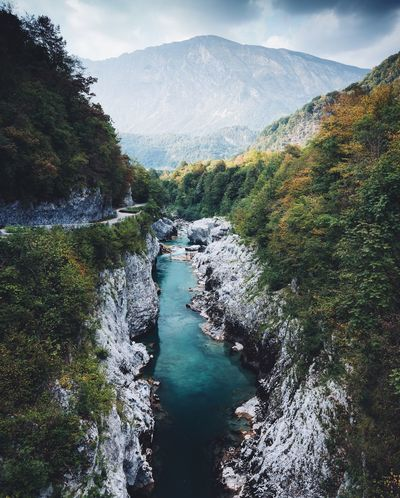 Blue rivers run through Slovenia. Slovenia VSCO Landscape Nature Tree Plant Water Nature Sky Scenics - Nature Beauty In Nature No People Day Cloud - Sky Tranquility Tranquil Scene Green Color Growth Mountain Non-urban Scene Outdoors Environment Land Power In Nature