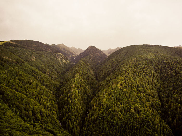 Beauty In Nature Day Mountain Nature No People Outdoors Scenics Sky Tranquil Scene Tranquility Transfagaraşan Tree