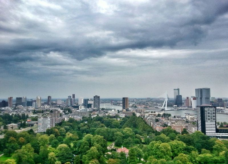 View of Erasmus Bridge side from above Landscape Urban Urban Landscape Building Buildings Architecture Bridge Trees Aerial View Aerial Sky Clouds Horizon Horizon Over Land City Cityscapes HDR Hdr_Collection Dramatic Ladyphotographerofthemonth Embrace Urban Life Neighborhood Map