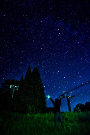Overnight Success Non-urban Scene Tranquil Scene Scenics Night Tranquility Tree Beauty In Nature Star - Space Low Angle View Nature Growth Sky Star Field Dark Idyllic Majestic Outdoors Blue Green Remote