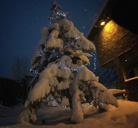 Again Christmas.... Winter Illuminated Snow Cold Temperature Night No People Outdoors