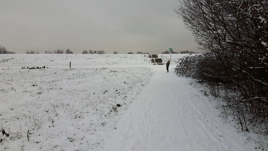 Pets Rural Scene Snow Dog Full Length Sand Dune Cold Temperature Winter Sky