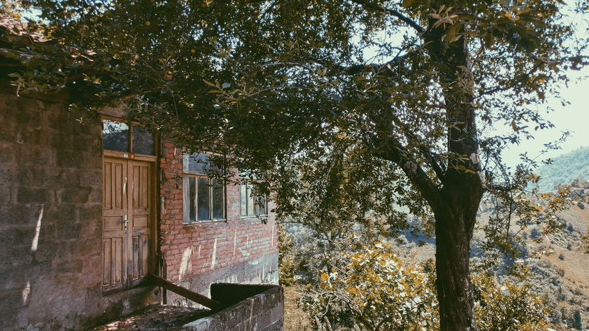 Window Day No People Forest Green Nature Good Morning Eyem Gallery Green Mountain Türkiye VSCO Nature Camping Goodtime Plateau Colors Sun ⛺ Nature Photography Treking Nature Photography