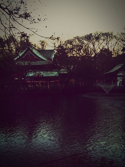 The Darkness Within Asian Culture Trees Ominous More Than 100 Like Old Weird Faded Darkness Water_collection