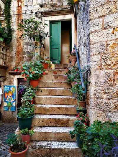 Built Structure Architecture Building Exterior Door Day House Plant Outdoors No People Window Box Trogir, Croatia Hrvatska, Summertime Doors From The Past