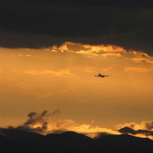El vuelo Sin Filtros