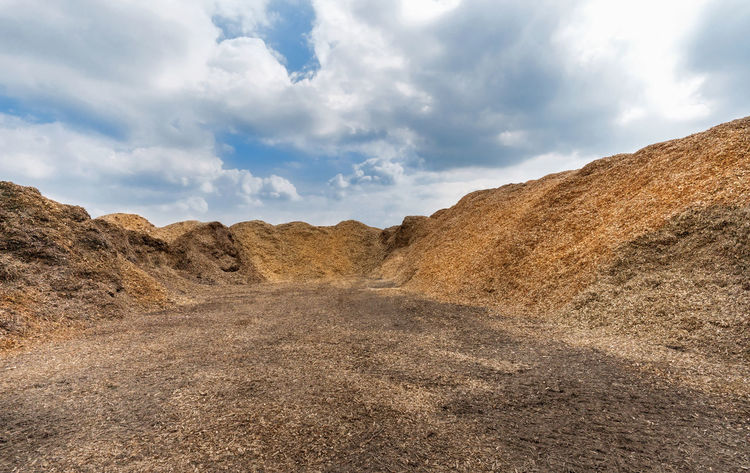Large heaps of woodchips on an outdoor place Chopped Industry Natural Wood Wood Chip Biomass Chip Chopped Wood Heap Material Much Mulch Piece Pile Shaving Shred Shredded Substrate Wood Chips Wood Piece Wood Pieces Wood Shavings Woodchip Woodchips Wooden