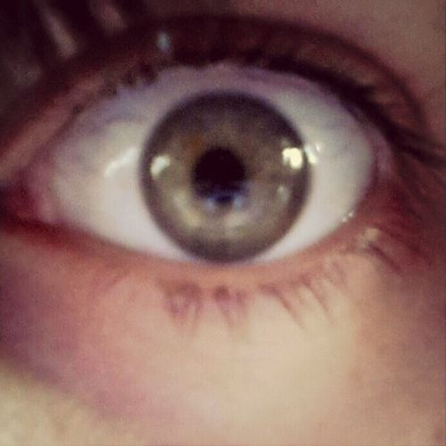 eye see you Eye Green Marron Flou