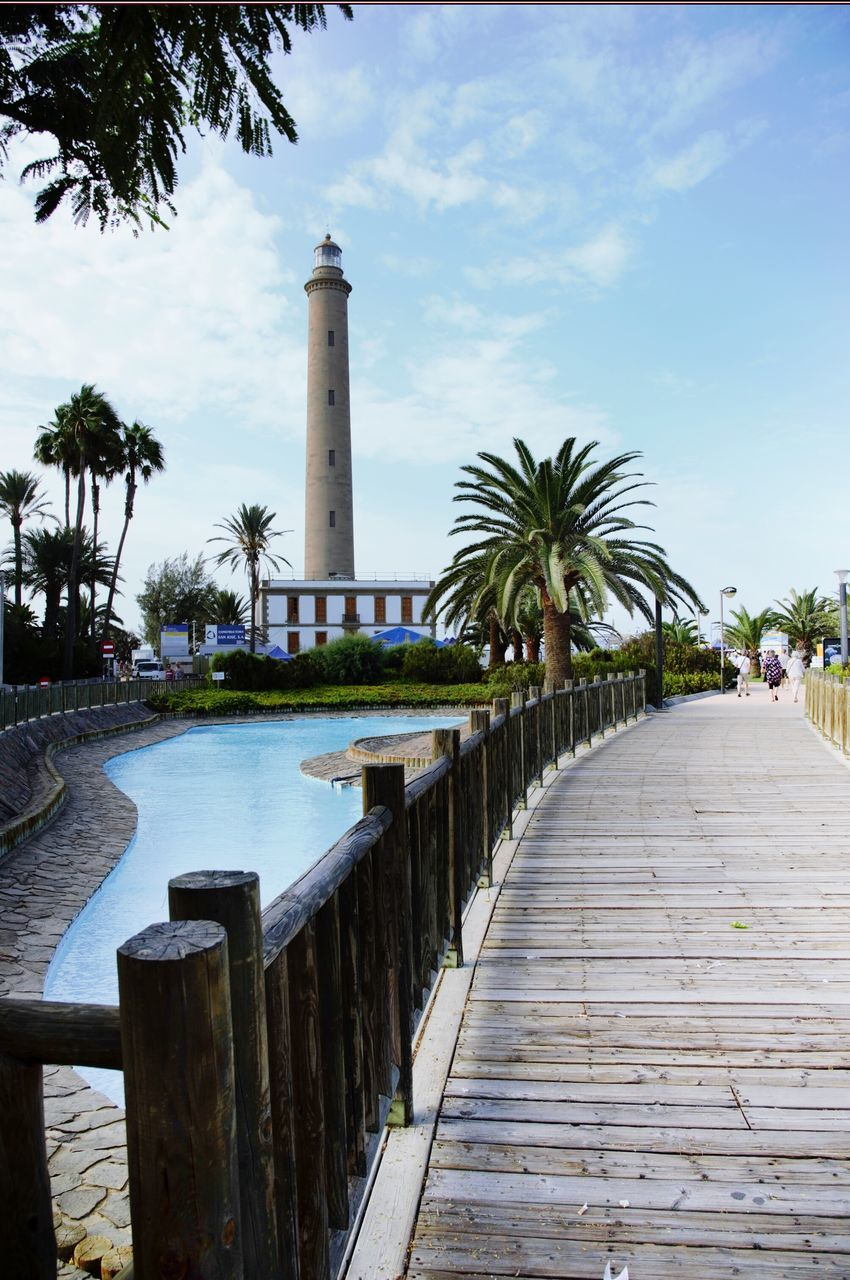 palm tree, tree, sky, architecture, the way forward, built structure, lighthouse, day, outdoors, no people, nature, water, building exterior
