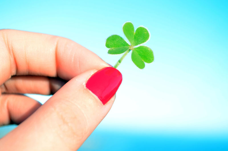 Cropped hand of woman holding clover leaf against sky